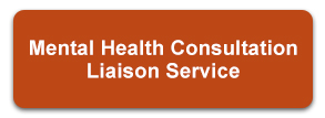 Mental Health Consultation Liaison Service